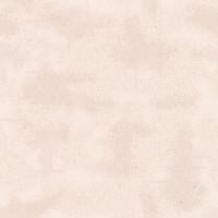 Riley Blake Fabric - Shabby by Lori Holt - Latte #C605R-LATTE