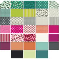Denyse Schmidt Fabrics - Precuts - Hexagons - Washington Depot by Denyse Schmidt