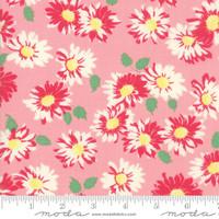 Moda Fabric - Cheeky - Urban Chiks - Petal Sassy #31143 12