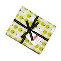 Moda Fabric Precuts - Smol by Ruby Star Society - Kimberly Kight - Fat Quarter Bundle