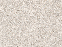 Stainsafe Noble Saxony Carpet- Oyster 660