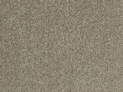The Noble Collection Carpet- Luxury Beige 665