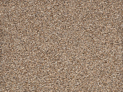 Noble Heathers Carpet- Seal Brown 875