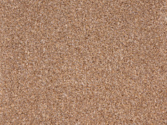 Stainsafe Moorland Carpet- Fallen Leaves 755