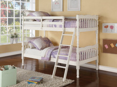 Kerri  Bunk Bed