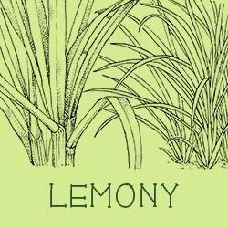 Lemony scent profiles