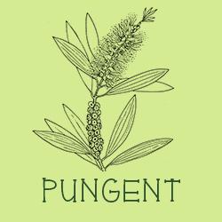 Pungent scent profiles