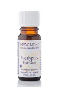 Eucalyptus, Blue-Gum Essential Oil