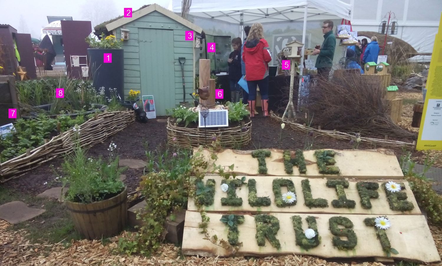 The Wildlife Trust's Rain Garden at the RHS Flower Show Cardiff 2018