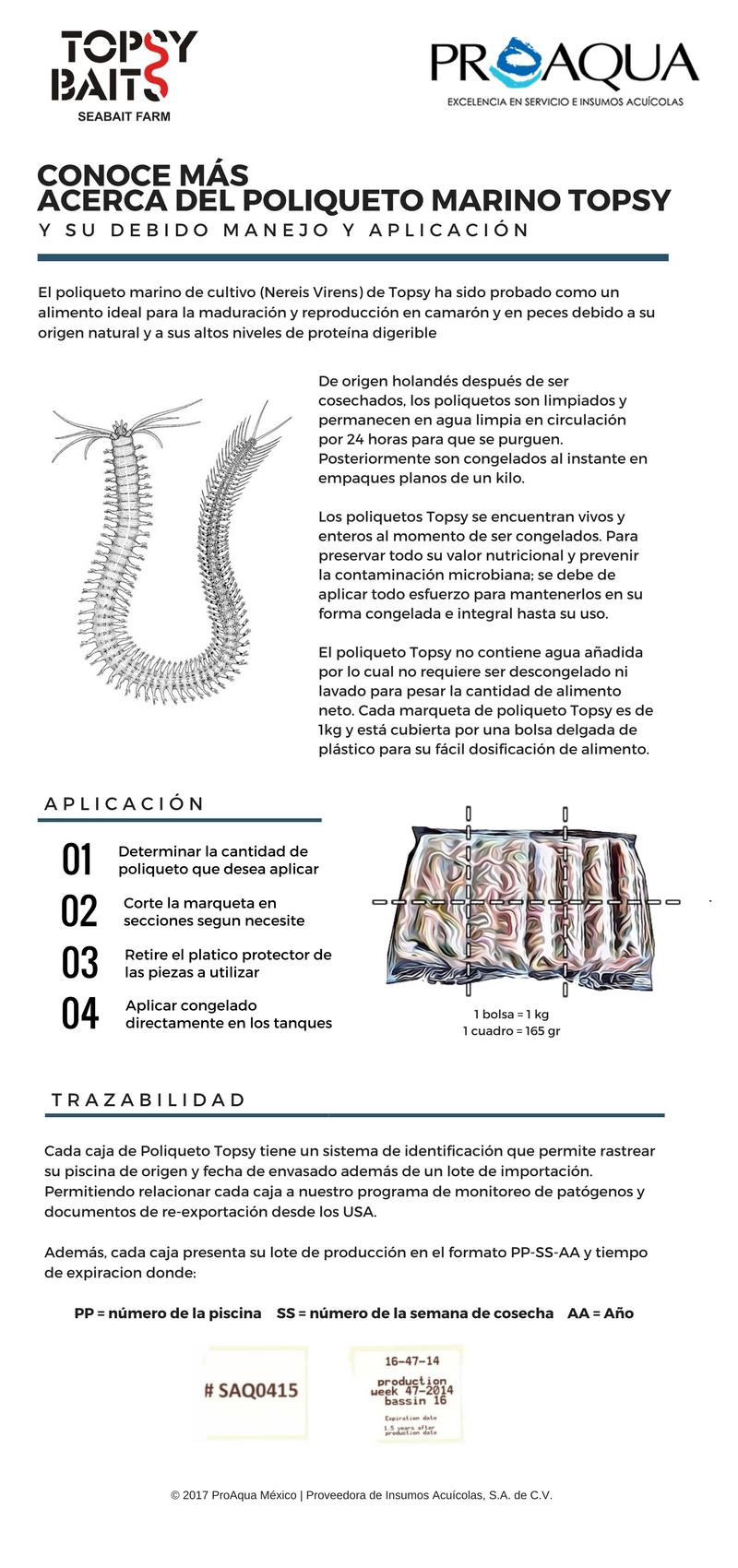 infografia-topsy.png