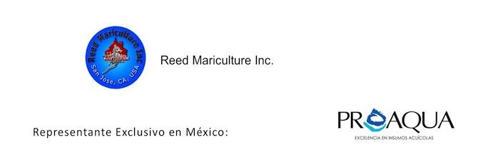 reed-mariculture-proaqua-mexico-acuicultura-aquaculture.jpg