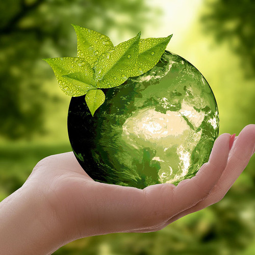 Woman's hand holding a green globe in the forest.