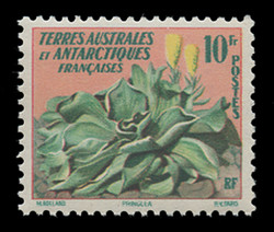 FSAT Scott #  11, 1959 Flower Issue