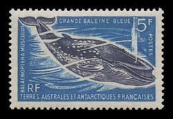 FSAT Scott #  25, 1966-9  5fr Great Blue Whale