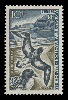 FSAT Scott #  26, 1966-9  10fr Cape Pigeons