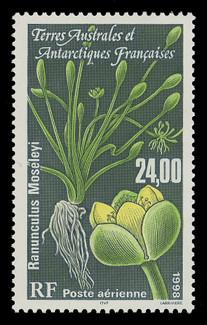 FSAT Scott # C 148, 1998 Plant - Ranunculas Moseleyi