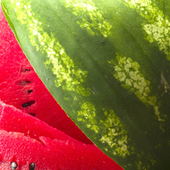 Watermelon Liquid