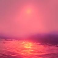 Pink Mist Liquid