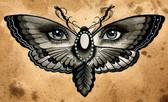Thea Fear - Butterfly Eyes - Canvas Giclee