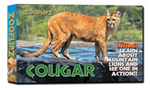 Cougar/Mountain Lion Book - Flipbook