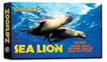 Sea Lion Book - Flipbook