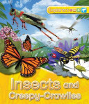 Explorers: Insects and Creepy Crawlies Book