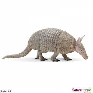 Safari - Armadillo Replica
