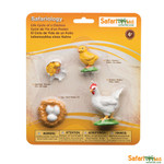 Life Cycle of a Chicken Replica Set 662816