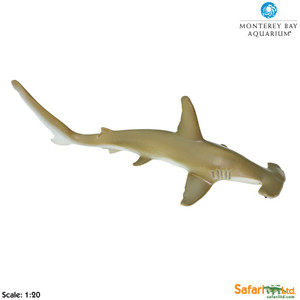 Safari - Hammerhead Shark Replica, Monterey Bay Aquarium Collection