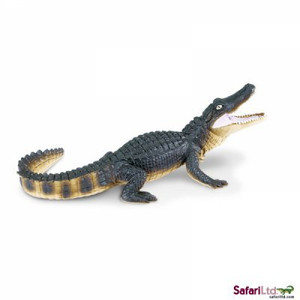 Safari - Alligator Replica