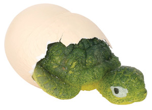 Hatchin' Grow Turtle Grow in Water Toy