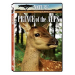 Nature: Prince of the Alps DVD - Documentary About Red Deer Calf
