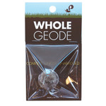 Whole Geode Discovery Science Kit CCGEO