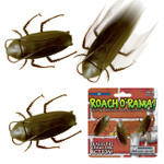 Roach O Rama Racing Insect Toy