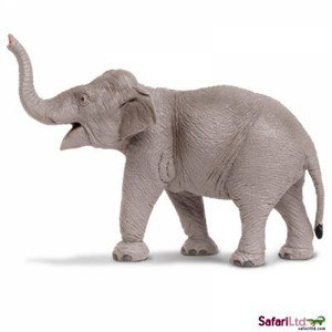 Safari - Asian Elephant Replica
