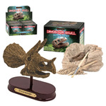 Dino Skull Excavation Kit