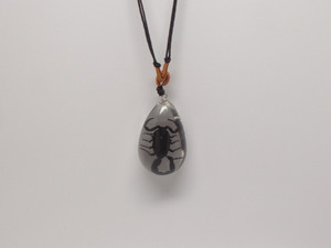 Black Scorpion Necklace
