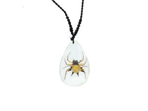 Spiny Spider Necklace