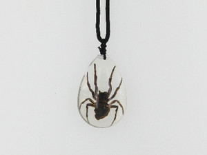 Brown Recluse Spider Necklace