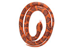 Eastern Cottonmouth Rubber Snake 20770