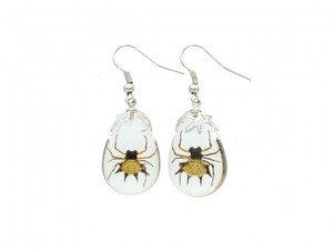 Spiny Spider Earrings EHA1SSE