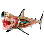 Great White Shark 4D Vision Anatomy Model Kit (26111)