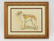 The Aristocrat. Russian Borzoi