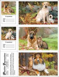 3FALLMIX3 - 3 Up Reminder Cards