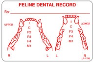 LR-170B - Feline Dental Record