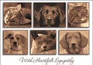 SYM9 - Sympathy Card