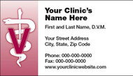 VBCSTD110-Standard, Appointment Backed, or Magnetic Business Card