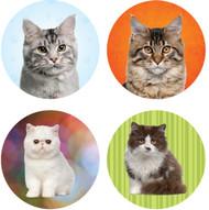 KSC1 - Kid Stickers