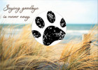 SDBEACH - with sample of stamped paw print