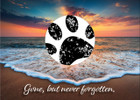 SDSUNSET - with sample of stamped paw print